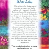 """Water Lilies 5"""" Charm Pack-2965"""