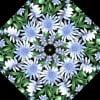 Wildflowers Kaleidoscope Quilt Kit -6538