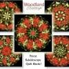 Woodland Greetings Kaleidoscope Quilt Kit -6529