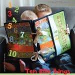 Ten Little Things Fabric Panel + FREE PATTERN -0