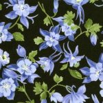Wildflowers IV - 32367 11 - Black-0