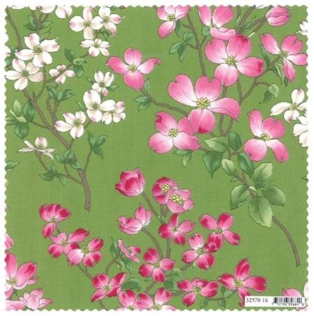 Dogwood Trail - 32570 16 - Blossoms-0
