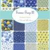 "Summer Breeze III 2.5"" Charm Pack-17064"