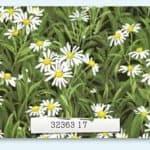 Wildflowers IV - 32363 17-0