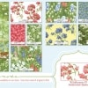 Wildflowers IV - 32362 14-17368